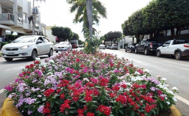Fotografe as cores da sua cidade, a paisagem... Você pode aparecer nas nossas mídias sociais (Foto: Daya Silva/CenárioMT)