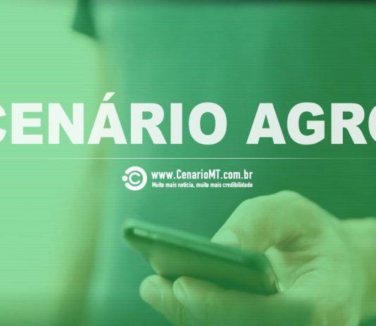 CENÁRIO AGRO - AGRICULTURA