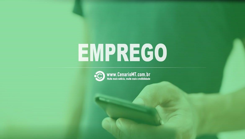 Sine Lucas do Rio Verde disponibiliza 232 vagas de emprego nesta quinta-feira - CenárioMT